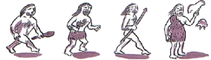 portada evolucio homes