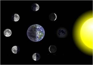 optativa 1 fases luna